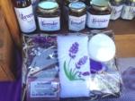 Scenic Rim Lavender
