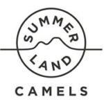 Summer Land Camels